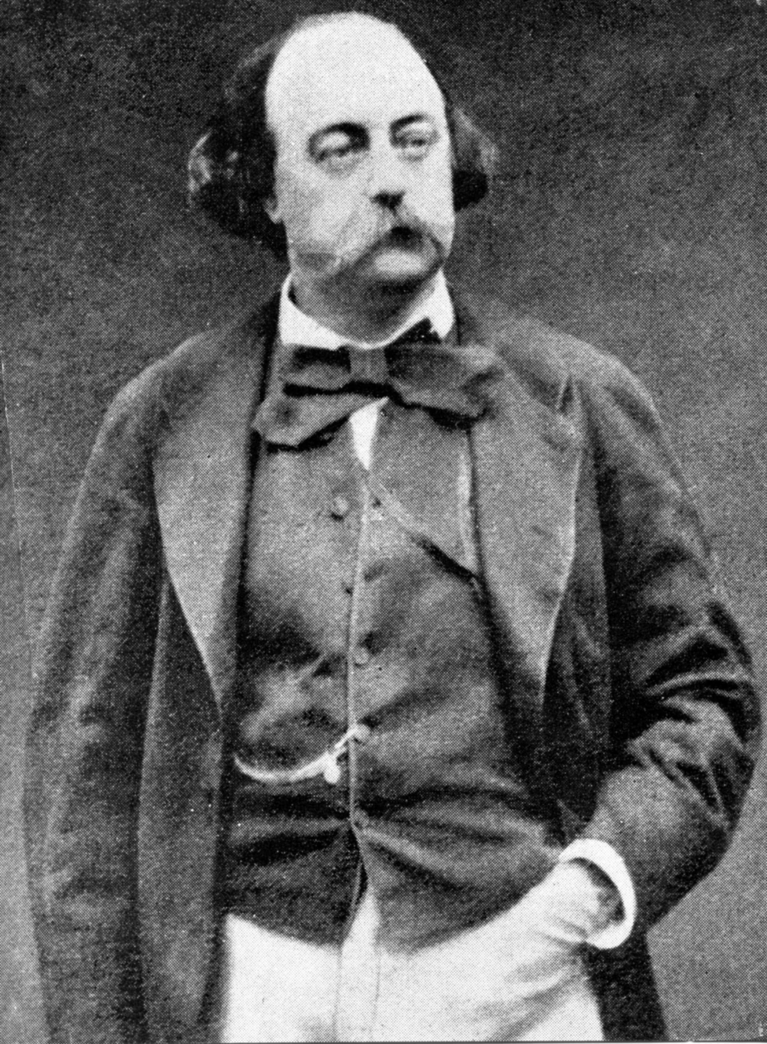 Aforismi Gustave Flauber - Immagine